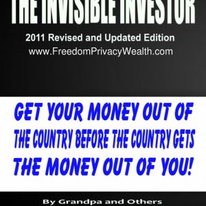 The Invisible Investor